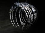 201102 - Artula Plastic Whale Skeleton