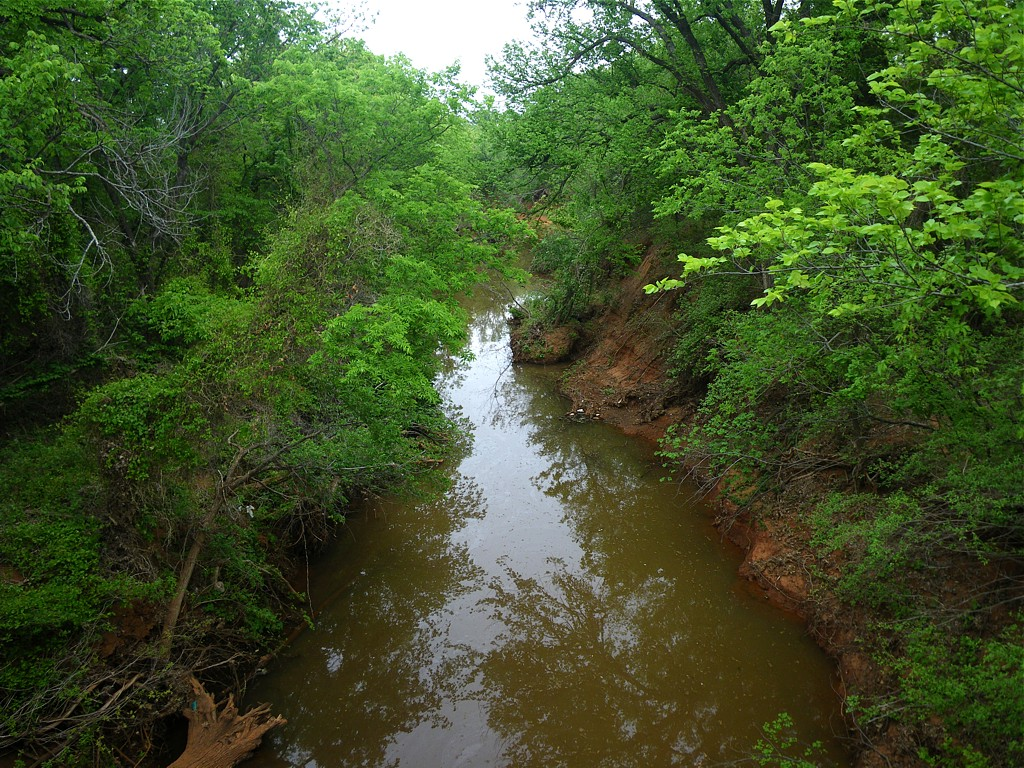 A Visit To Oklahoma City S Martin Park Nature Center A